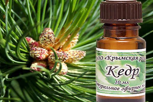 эфирное масло кедра-свойства