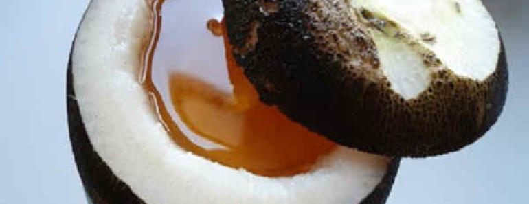 черная редька с медом от кашля-рецепты
