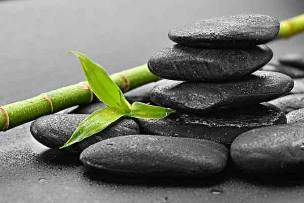 камень шунгит-лечебные свойства и применение