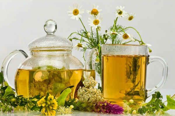 чай успокаивающий нервную систему-противопоказания