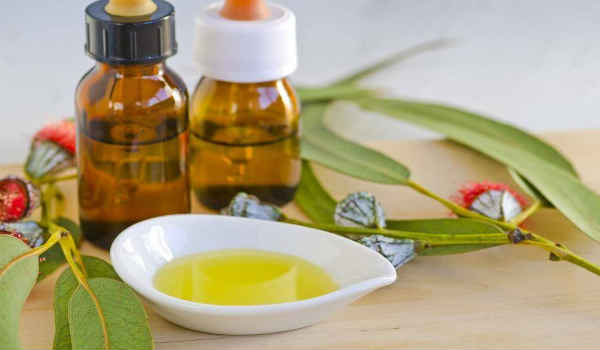 эфирное масло эвкалипта-состав,свойства