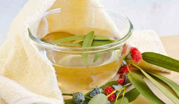 эфирные масла от зуда-эвкалипт