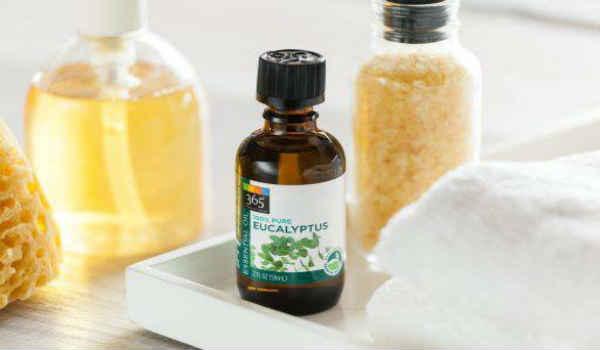 применение эфирного масла эвкалипта-в быту