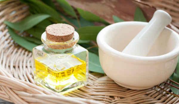 применение эфирного масла эвкалипта-в косметологии