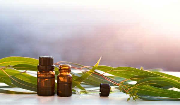 применение эфирного масла эвкалипта-лечение