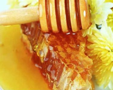 мед в сотах-польза и вред для организма