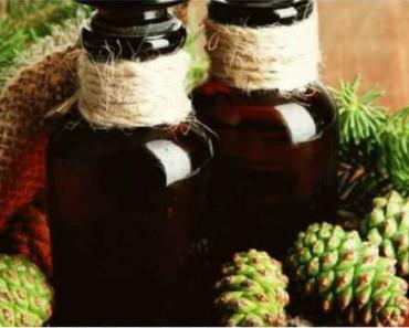 сосновые шишки в народной медицине-свойства-рецепты