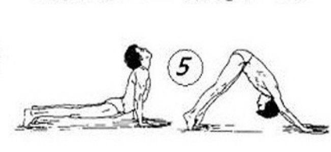 гимнастика тибетских монахов-упражнение 5