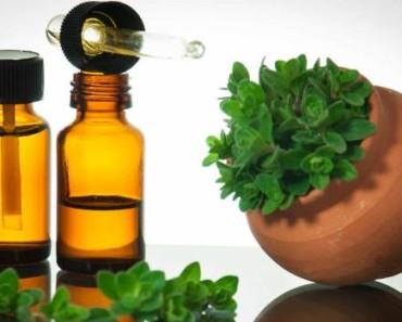 эфирное масло орегано-свойства-применение