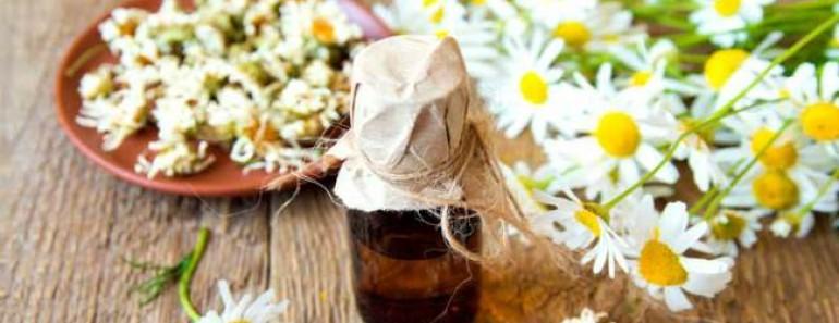 эфирные масла от насекомых