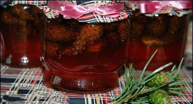 варенье из шишек сосны-рецепты