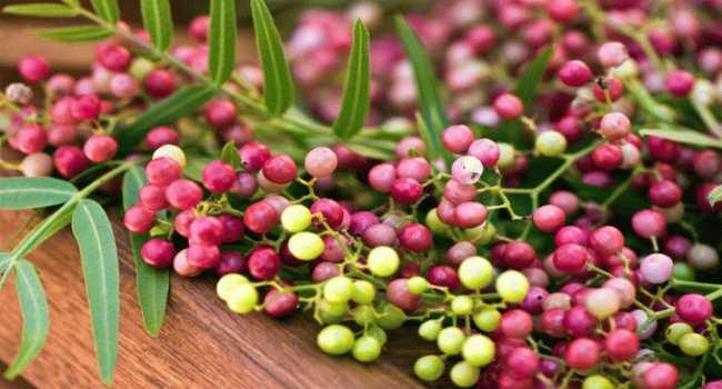 эфирное масло розового перца-свойства