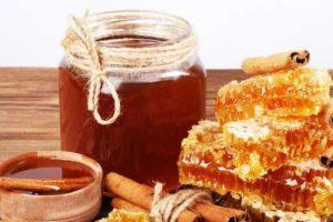 таежный мед-полезные свойства и противопоказания