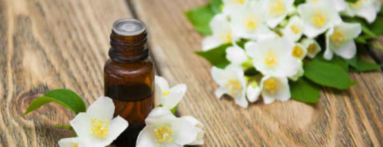 эфирное масло жасмина-свойства и применение