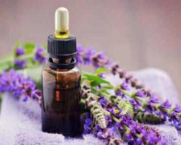 эфирное масло шалфея-свойства и применение