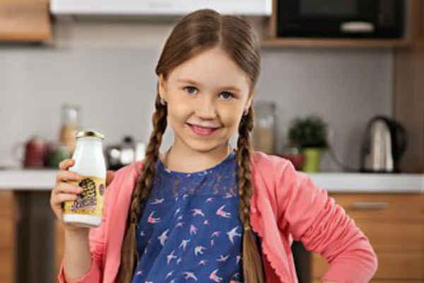 Кедровое молочко лечебные свойства и противопоказания
