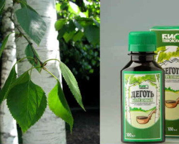 lechenie-berezovym-degtem-что лечит рецепты