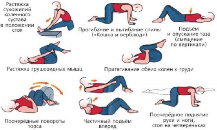 лечебная гимнастика при геморрое-комплекс упражнений 2