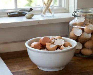 яичная скорлупа как источник кальция-как приготовить и принимать