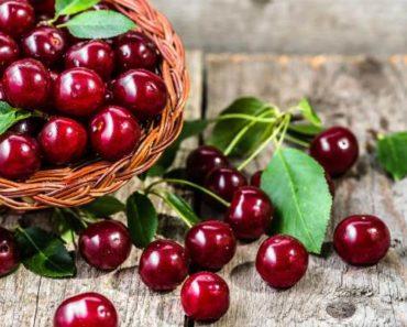 вишня-полезные свойства и противопоказания