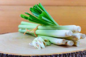 lemongrass-lechebnye-svojstva-primenenie-i-protivopokazaniya