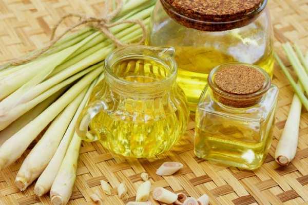 efirnoe-maslo-lemongrassa-svojstva-i-primenenie